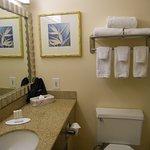 counter top, toilet, sink, mirror