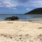 Bild från Arajilla Retreat - Lord Howe Island
