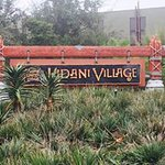 Foto de Disney's Animal Kingdom Villas - Kidani Village