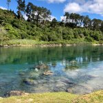 beautiful Waikato river, right in front of your room