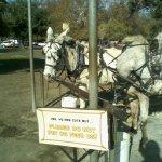 Griffith Park Photo