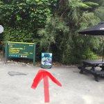 Photo of Pelorus Eco Adventures