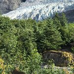 Photo de Mendenhall Glacier Visitor Center