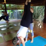 Practising handstands in the yoga shala with Laura