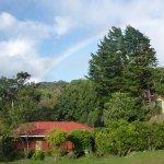 Photo de Hotel Montana Monteverde