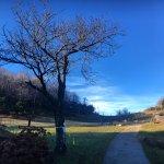 Photo de Agriturismo Bertin