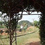 Foto van Hanging Gardens (Ferozeshah Mehta)