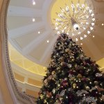 Christmas tree and the grand staircase