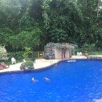 Arasha Tropical Rainforest Resort & Spa Photo