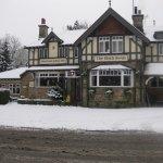 Fresh snow on the Black Swan