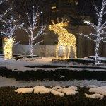 Foto de Four Seasons Hotel Toronto