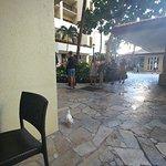 タパ・カフェの写真