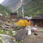 a Gurung Village