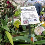 informational signs are posted throughout the greenhouses