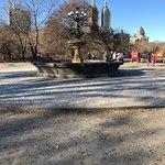 Foto di Central Park Tours