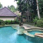 Foto di Ubud Sari Health Resort