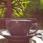 Secret Garden Cafe Foto