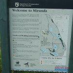 Welcome to Miranda