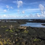 Foto de Kapoho Tide Pools