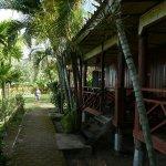 les bungalows face au Mékong
