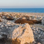 Photo of Cape Greco National Forest Park