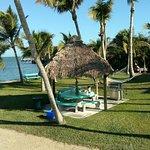 写真Gulf View Waterfront Resort枚