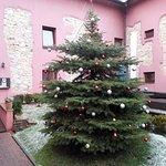 Christmas tree, entrance