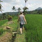 walking through the rice terraces