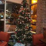 Lobby, Christmas Tree & 1st floor Hallway
