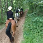 Red Ridge Riding Stableの写真