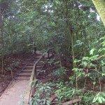 Foto di Iguana Mama Adventure Tours
