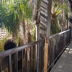Photo of Radisson Suites Hotel Anaheim - Buena Park