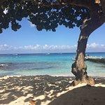 Φωτογραφία: Playa Azul Golf, Scuba, Spa