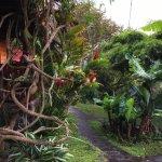Photo de Arco Iris Lodge