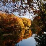 震生湖:紅葉