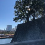 Photo of The East Gardens of the Imperial Palace (Edo Castle Ruin)
