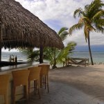 Photo de Hilton Key Largo Resort