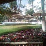 Photo of Isrotel Royal Garden