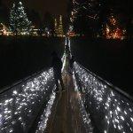 Canyon Lights Suspension Bridge