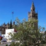 Φωτογραφία: Hotel Palacio Alcazar