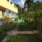 Carib-Ocho Rios Photo