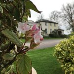 Best Western Exeter Lord Haldon Country Hotel Foto