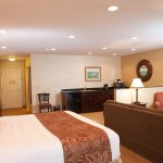 Indulge in 620 sq./ft. of pure bliss. Spacious and pristine Deluxe King Suites.