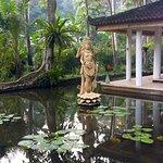 Foto de Jiwa Damai Organic Garden & Retreat