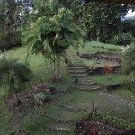 Foto de Bambua Nature Cottages