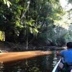 Photo of Napo Wildlife Center Ecolodge