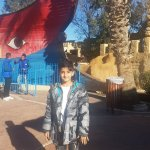 Photo of Yasmin Hammamet
