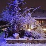 Qué mejor manera de empezar el año, nevando.