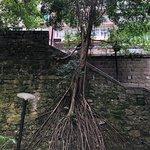 Wan Chai - random images