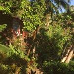 Photo of Jinetes de Osa Hotel